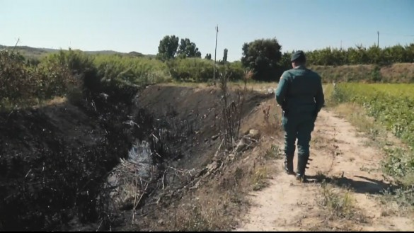 Cehegín sufre otro incendio forestal intencionado, el tercero en tres días
