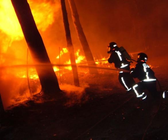 El riesgo de incendios forestales es extremo en la mayor parte de la Región