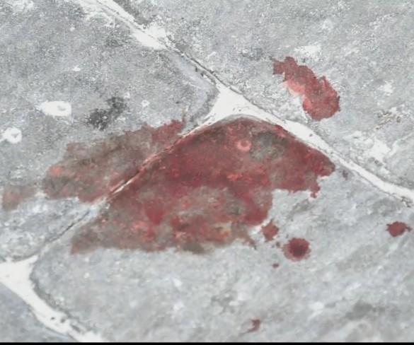Un hombre de 36 años mata a su hermano mellizo en Cehegín tras una discusión