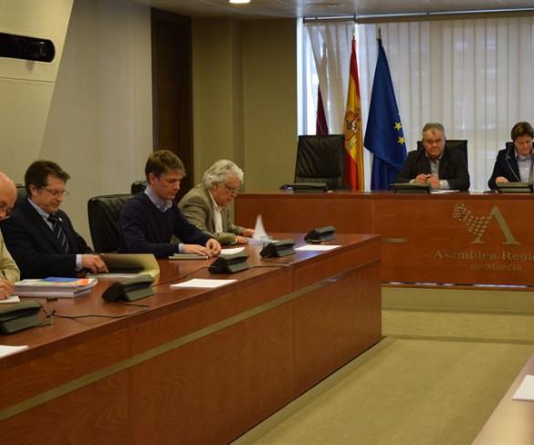 Unanimidad en la Asamblea para eliminar los 11 pasos a nivel sin barreras que hay en la Región