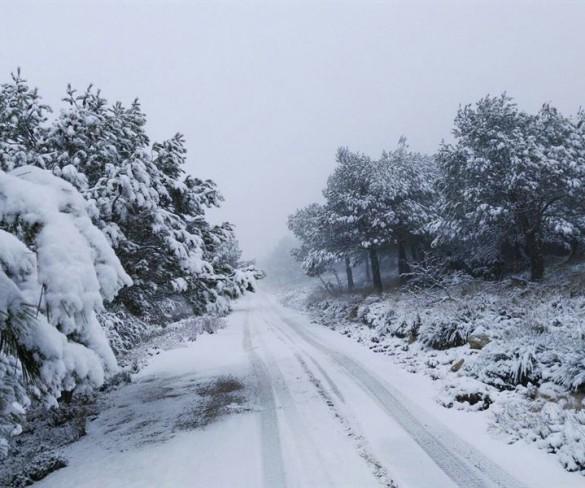 Murcia despide este domingo el invierno más cálido de los últimos 50 años