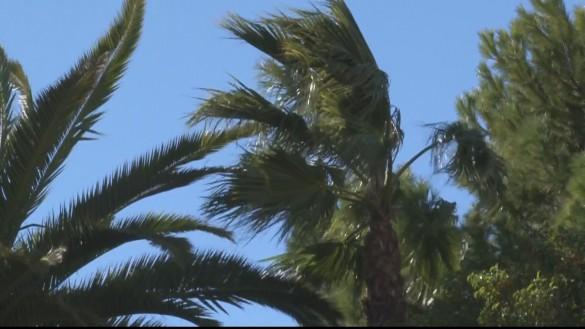 Meteorología eleva el nivel de riesgo por rachas de viento de hasta 90 km/h este sábado