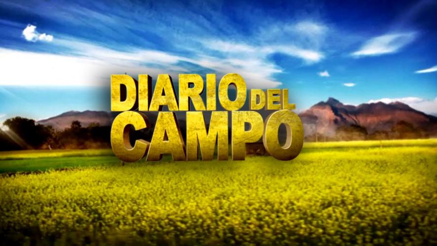 Primera edición de los Premios Diario Del Campo