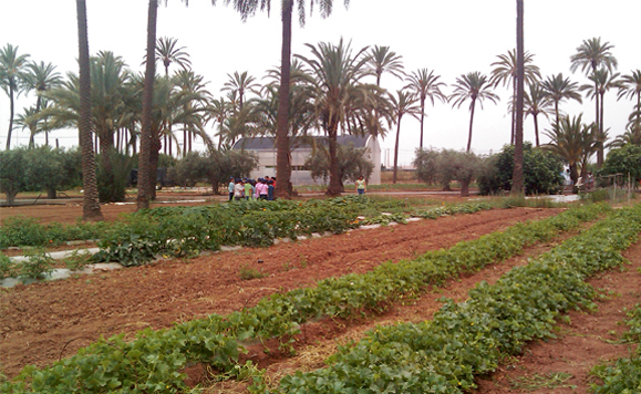 La Estación Experimental Agroalimentaria Tomás Ferro, premio Diario del Campo